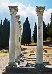 Kos iii